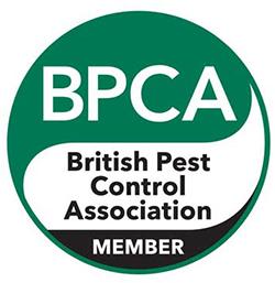 BCPA-Level-2